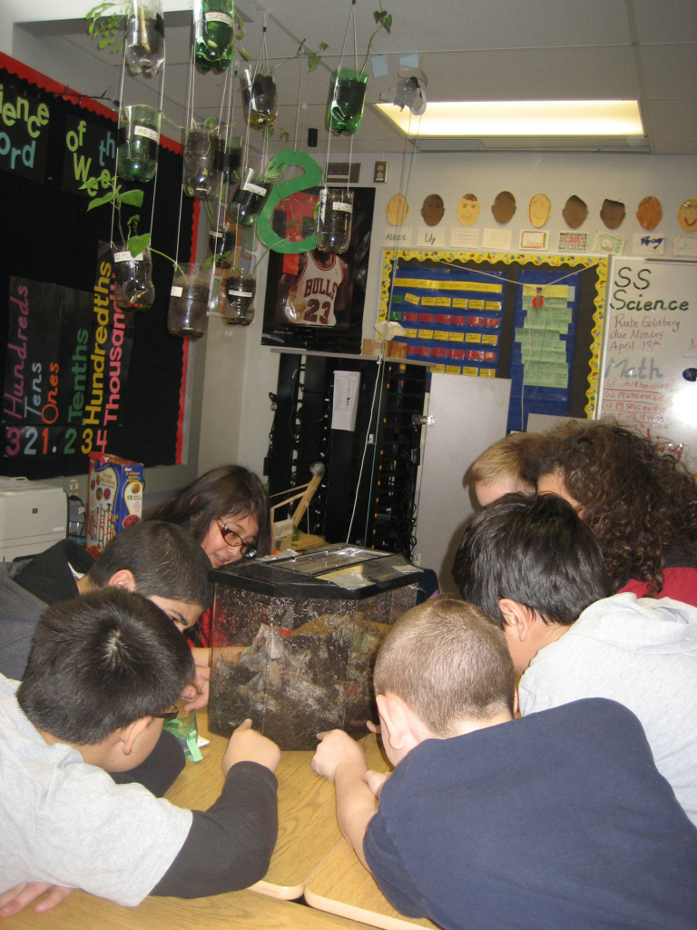 Students examining some red worms up close.